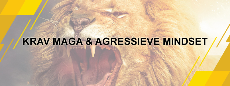Blog Krav Maga en Agressieve Mindset